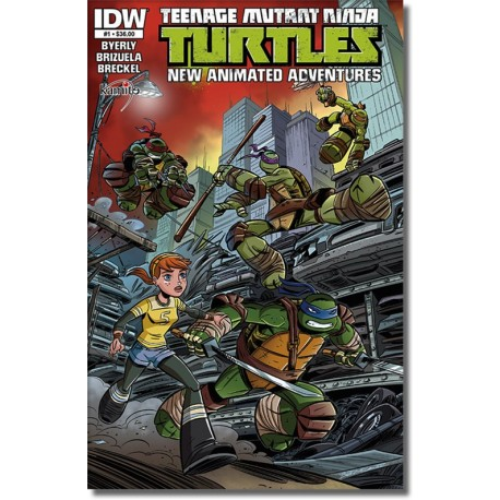 TEENAGE MUTANT NINJA TURTLES A NEW ANIMATED  ADVENTURES N° 1
